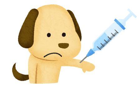 狂犬病予防接種