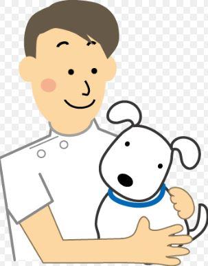 犬避妊虚勢手術