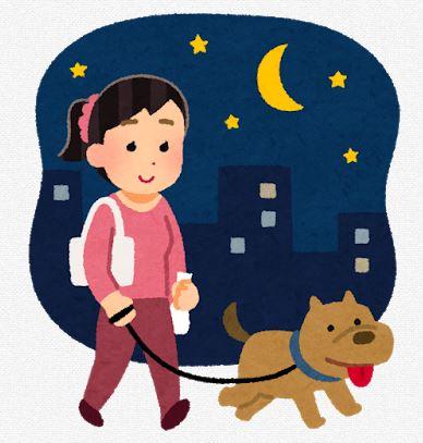 犬の夜の散歩、交通事故防止に光る反射グッズ、首輪、リード